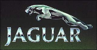Jaguar Brand